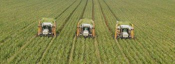 Απαλλαγή φόρου μεταβίβασης στην αγορά γεωργικής γης και βοσκότοπου