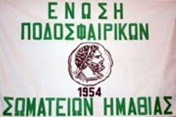 EΠΣ Ημαθίας : Απορρίφθηκε η καταγγελία της Αλεξάνδρειας