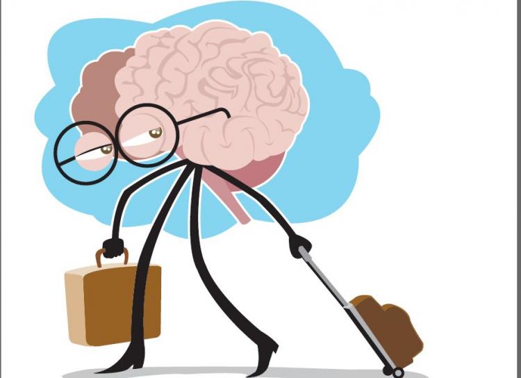 Kαι μετά την εισαγωγή στα Πανεπιστήμια, τι ακολουθεί; To brain drain!