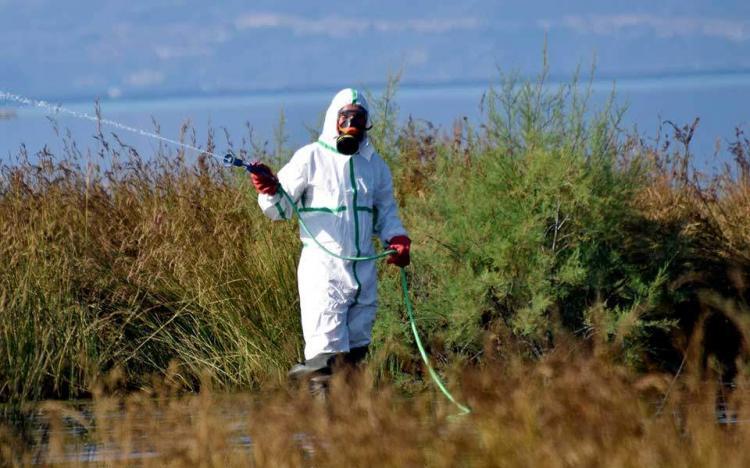 Έκτακτη ανακοίνωση : Ψεκασμοί απόψε στην T.K. Αγίας Μαρίνας για την αντιμετώπιση των ακμαίων κουνουπιών