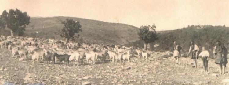 Απόδημοι και άποικοι της Βλάστης - Του Γ. Τσιαμήτρου
