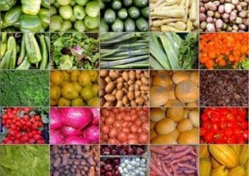 «Λογάριαζαν χωρίς τον ξενοδόχο» για Εκθετήριο και Ηλεκτρονικό Δημοπρατήριο Αγροδιατροφικών Προϊόντων…