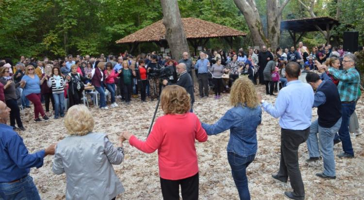 Κάστανο, κρασί και παραδοσιακή μουσική άναψαν το γλέντι στη Φυτειά