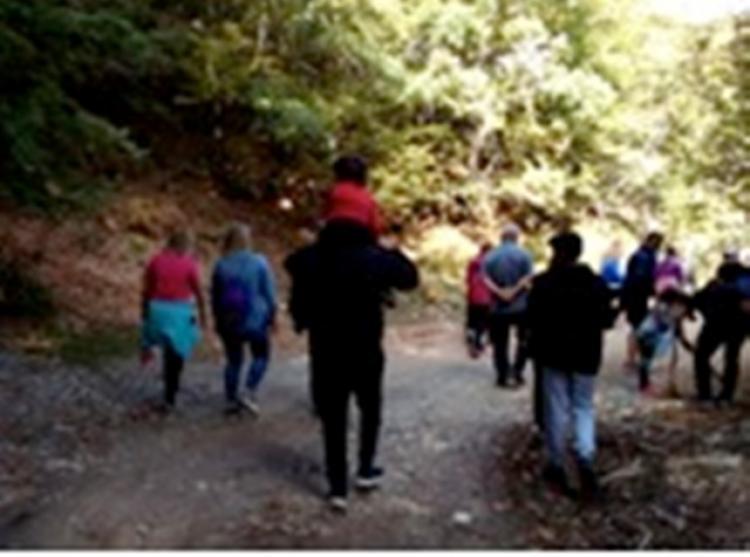 Φθινοπωρινή απόδραση σε καστανόδασος από τον Πολιτιστικό Σύλλογο Κουμαριάς «Η ΝΤΟΛΙΑΝΗ»
