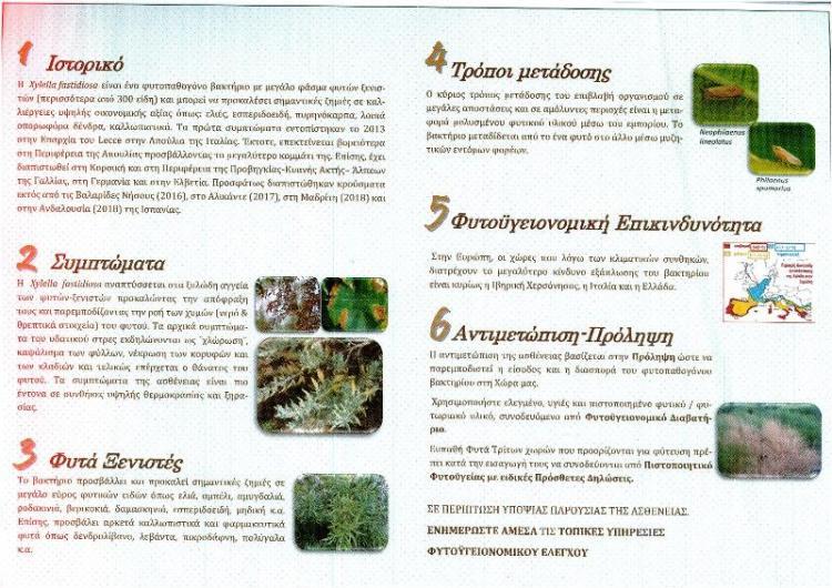 Εύρεση του επιβλαβούς οργανισμού καραντίνας Xylella fastidiosa σε φυτωριακό υλικό προέλευσης Ισπανίας
