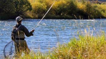 Υπενθύμιση για την απαγόρευση αλιείας πέστροφας από το τμήμα αλιείας της Π.Ε. Ημαθίας