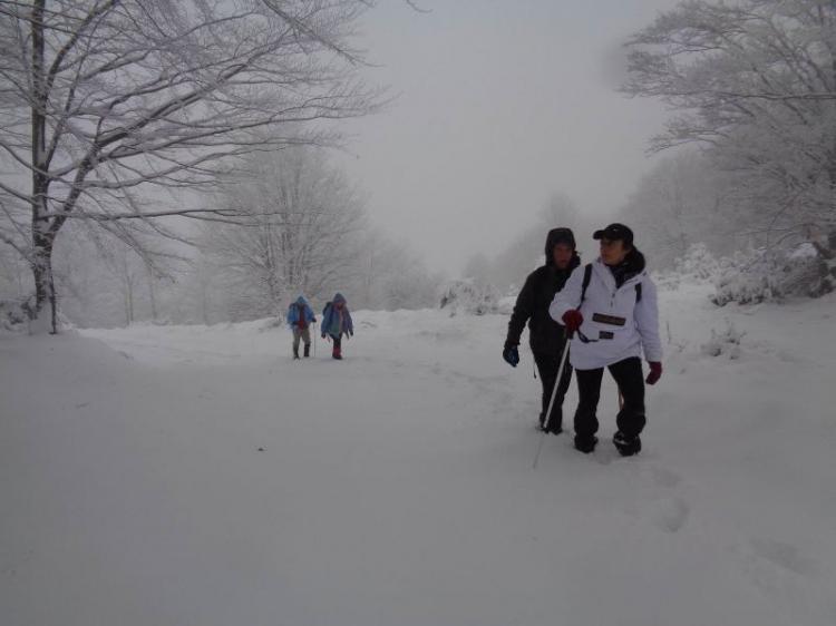 ΒΕΡΜΙΟ: Παναγία Σουμελά  -  Φούρκα 1551, Πορεία στο χιόνι, Κυριακή 18 Νοεμβρίου  2018, με τους Ορειβάτες Βέροιας