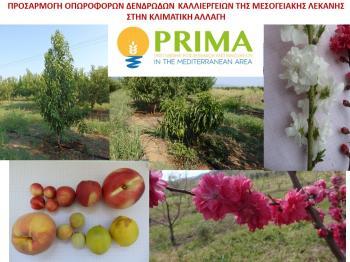 Εγκρίθηκε το ερευνητικό έργο FREECLIMB στο ανταγωνιστικό πρόγραμμα PRIMA, όπου συμμετέχει το Τ.Φ.Ο.Δ. Νάουσας