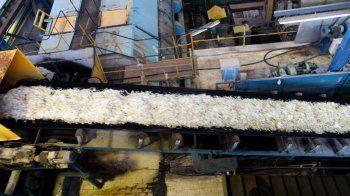 Ξεκίνησαν οι παραλαβές τεύτλων στο εργοστάσιο της ΕΒΖ στο Πλατύ