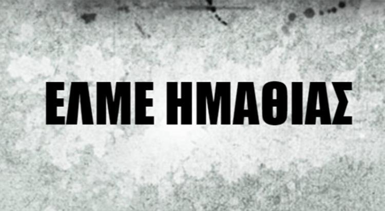Καταγγελία της ΕΛΜΕ Ημαθίας για την επίθεση στα γραφεία του ΣΥΡΙΖΑ