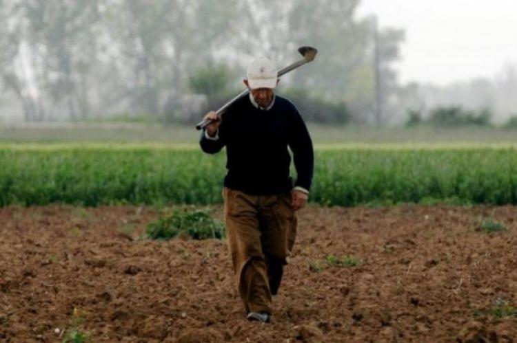 Ο Α.Σ. «Μαρίνος Αντύπας» καταγγέλλει τη δικαστική δίωξη ηγετικών στελεχών του αγροτικού κινήματος
