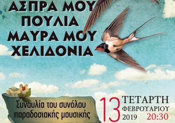 «Άσπρα μου πουλιά, μαύρα μου χελιδόνια» στο Χώρο Τεχνών Δήμου Βέροιας