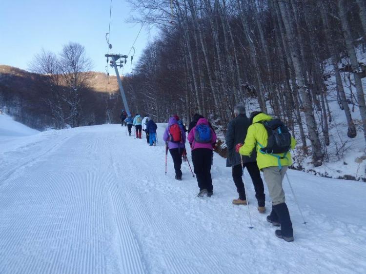ΒΕΡΜΙΟ, Χιονοδρομικό 3- 5 Πηγάδια, 10 Φεβρουαρίου  2019, πορεία στο χιόνι, με τους Ορειβάτες Βέροιας