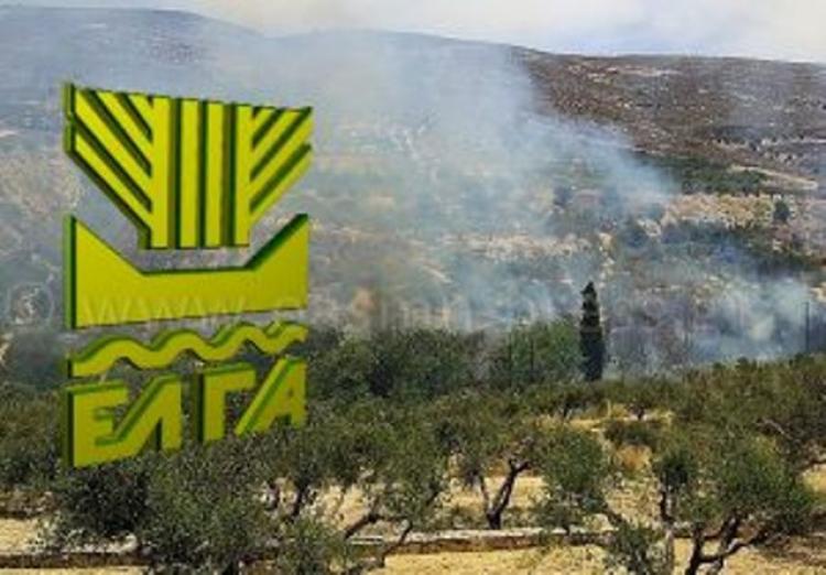 ΕΛΓΑ : Πρόγραμμα Κρατικών Οικονομικών Ενισχύσεων «Πυρκαγιές 2017»