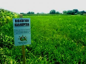 Μετατέθηκε η περίοδος υποβολής αιτήσεων για τη 2η πρόσκληση του Μέτρου 11 «Βιολογικές Καλλιέργειες»