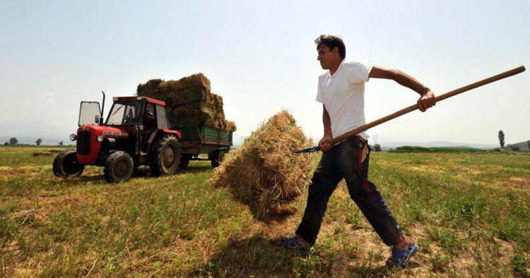 Θ. Παπακωνσταντίνου για ΦΠΑ 24% στα αγροτικά εφόδια: