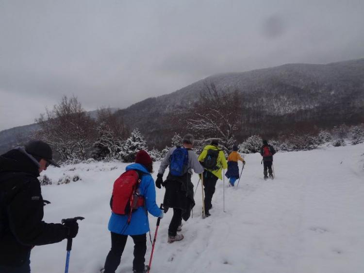 ΒΕΡΜΙΟ, ΚΟΥΜΑΡΙΑ – 5 ΠΥΡΓΟΙ  1750 μ., Πορεία στο χιόνι, Κυριακή  24 Φεβρουαρίου 2019, με τους Ορειβάτες Βέροιας