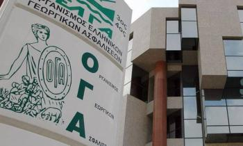 «Ασφάλιση και Συνταξιοδότηση στον ΟΓΑ» : εκδήλωση νομικής πληροφόρησης στην Ελιά