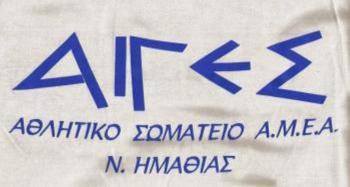 Ανάδειξη νέου Δ.Σ. στο αθλητικό σωματείο ΑμΕΑ ν. Ημαθίας «Αιγές»