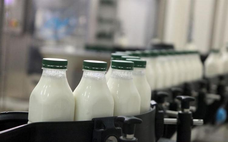 Σε ισχύ νέα μέτρα ελέγχου της αγοράς γάλακτος για την προστασία των κτηνοτρόφων