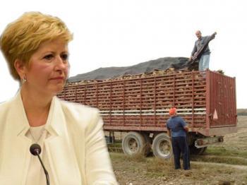 Ερώτηση για αδιευκρίνιστα σημεία στις εξελίξεις στην Ελληνική Βιομηχανία Ζάχαρης κατέθεσε η βουλευτής Μαρία Κόλλια-Τσαρουχά