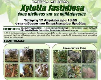 Ημερίδα με θέμα «xylella fastidiosa ένας κίνδυνος για τις καλλιέργειες» στο Επιμελητήριο Ημαθίας