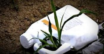 Δήμος Βέροιας : Πρώτη συλλογή κενών συσκευασιών φυτοπροστατευτικών προϊόντων για το 2019