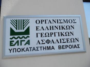 Παρέμβαση του Αγροτικού Συλλόγου Νάουσας «Μαρίνος Αντύπας» στον ΕΛΓΑ