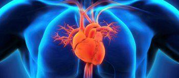 Ας μοιραστούμε τη γνώση και δύναμη των παραγόντων κινδύνου που απειλούν την καρδιά, του Δ.Κουπίδη