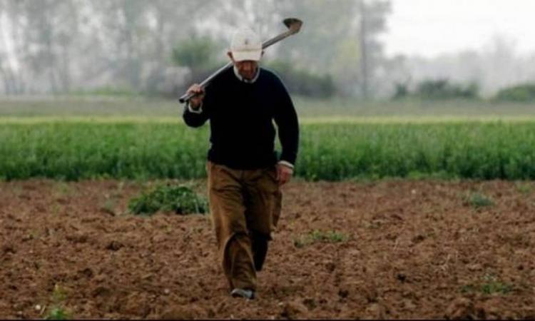 Σημαντική αύξηση στο κόστος παραγωγής «πνίγει» τους αγρότες