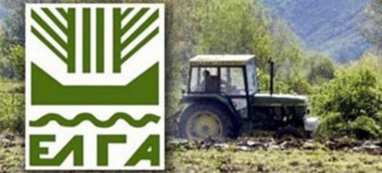 Δήλωση ζημιών από τον παγετό Ιανουαρίου-Μαρτίου στους ανταποκριτές ΕΛΓΑ Αλεξάνδρειας