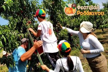 Δράσεις για παιδιά στο 4o Φεστιβάλ Ροδάκινου Βέροιας