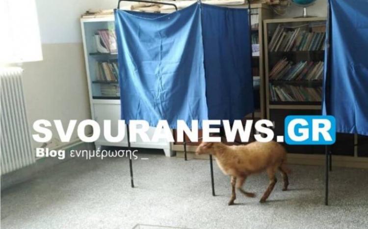 Παράξενες ειδήσεις...