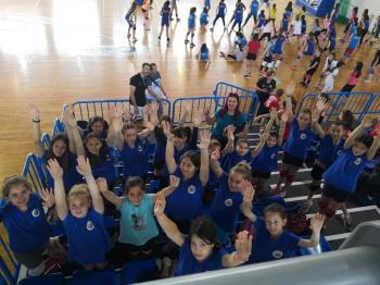 Volley ΓΑΣ Αλεξάνδρεια : Αγωνιστικός απολογισμός σεζόν 2018-2019