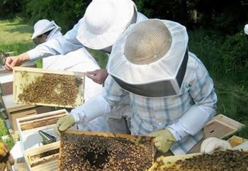 Δωρεάν τμήμα τριήμερης εκπαίδευσης σε Μελισσοκόμους από το Κέντρο «ΔΗΜΗΤΡΑ» Σκύδρας