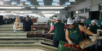 N.Καρατζιούλα : «Από την 7η Ιουλίου η κυβέρνηση του Κ.Μητσοτάκη θα είναι στην πρώτη γραμμή ανασύνταξης του παραγωγικού ιστού της χώρας»
