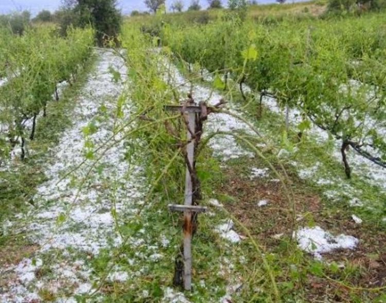 Αναγγελία ζημιάς στη Νάουσα από χαλάζι ή βροχόπτωση