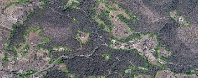 Αναρτώνται σιγά-σιγά οι δασικοί χάρτες…