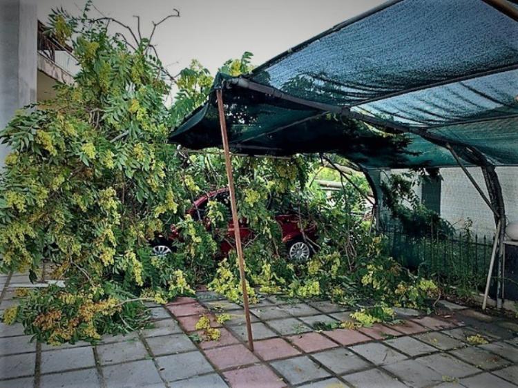 Ενημέρωση από το Δήμο Αλεξάνδρειας για τις προσπάθειες αποκατάστασης των ζημιών από την προχθεσινή βροχόπτωση
