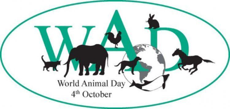 ΥΠΑΑΤ με αφορμή την Παγκόσμια Ημέρα των Ζώων: Ηθική δέσμευση του ανθρώπου, να σέβεται όλα τα ζώα