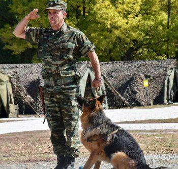 Ο Στρατός μας τιμά τους τετράποδους συνεργάτες του