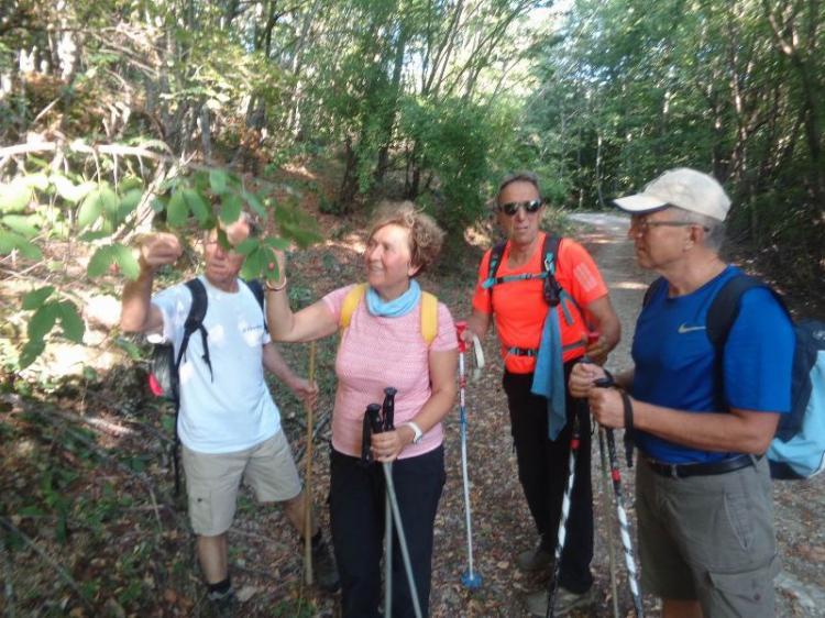 ΒΕΡΜΙΟ, Ταξιάρχες – Nτορντόπολη  3-5  Πηγάδια, Κυριακή 1 Σεπτεμβρίου 2019, με τους Ορειβάτες Βέροιας