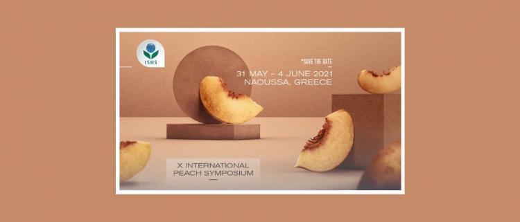 Στην Ημαθία το 10 παγκόσμιο επιστημονικό συνέδριο ροδακινιάς!