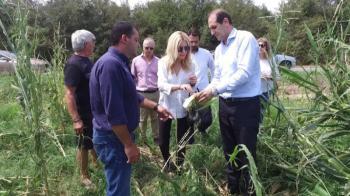 Θετικός ο Μ. Βορίδης στη στρεμματική αποζημίωση των αγροτών μας, όχι όμως λόγω του εμπάργκο!