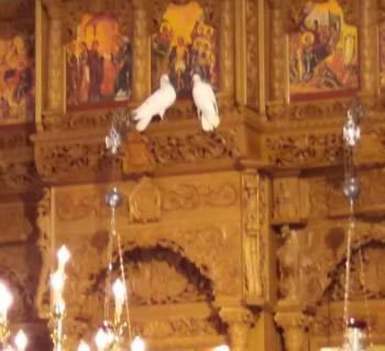 Το θαυμαστό γεγονός με τα περιστέρια στα πόδια του βαπτιζομένου Χριστού, στη Μεταμόρφωση της Νάουσας