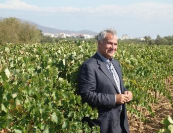 Με απόφαση του ΥπΑΑΤ, Μ. Βορίδη, κατανέμονται οι νέες άδειες φύτευσης οινοποιήσιμων ποικιλιών αμπέλου για το 2020