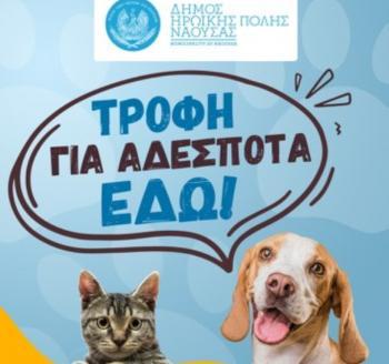 Σε λειτουργία η πιλοτική ηλεκτρονική εφαρμογή «ΑΤΛΑΣ» για τη σίτιση και τη φροντίδα αδέσποτων ζώων από το Δήμο Νάουσας