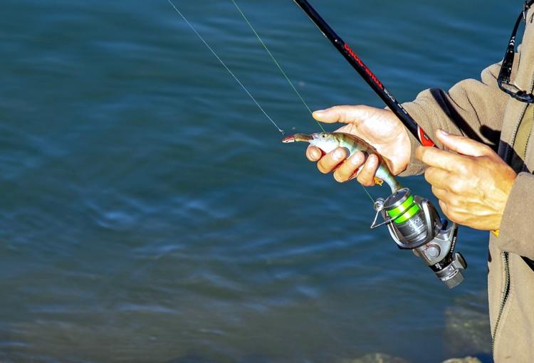 Απαγόρευση αλιείας στα εσωτερικά ύδατα της Π.Ε. Ημαθίας