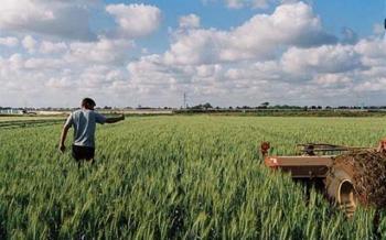 Ερώτηση βουλευτών του ΣΥΡΙΖΑ για την εξασφάλιση διαθεσιμότητας Εργατών Γης για τις ανάγκες των αγροτικών καλλιεργειών