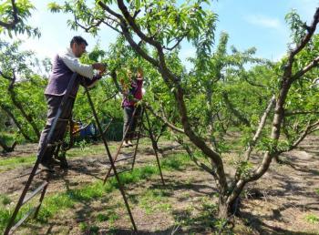 Αγροτικοί Σύλλογοι Δήμου Σκύδρας & Ημαθίας : ΟΧΙ στην παράλογη και «εκβιαστική» απαίτηση αύξησης του ημερομισθίου στα χωράφια